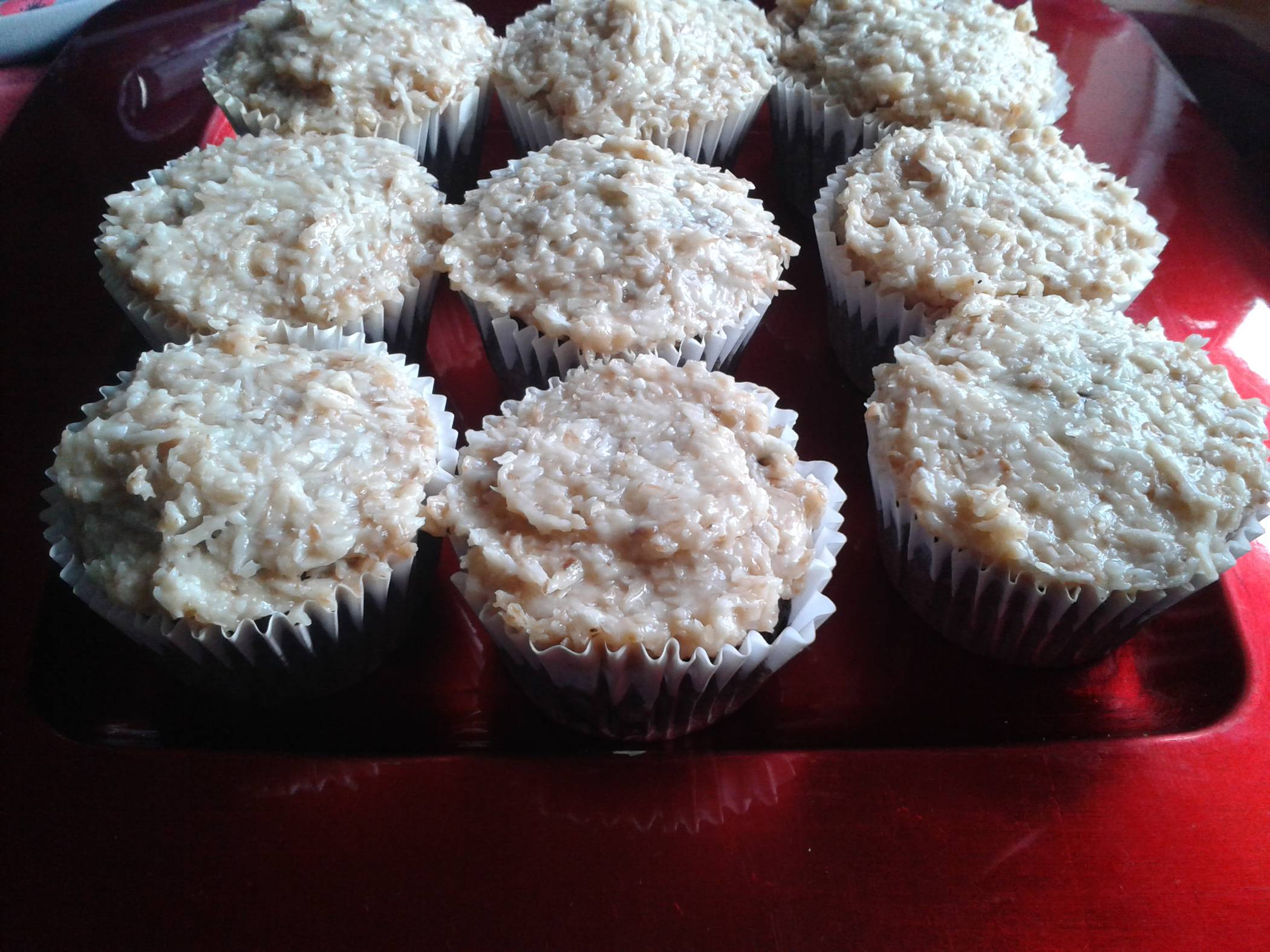 Vegan Chocolate Cupcakes with Coconut Frosting